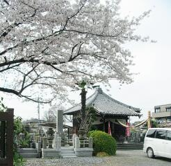 20090404_adachi23