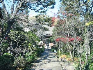 20091207_toshima59