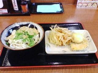 20100313_udon