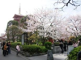 20100403_sensoji