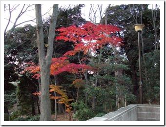 20101227_arisugawa