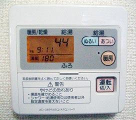 20110112_furo