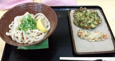 20110116_sanuki