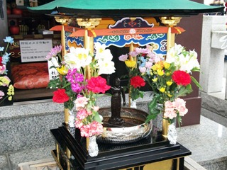 20110403_hanamatsuri