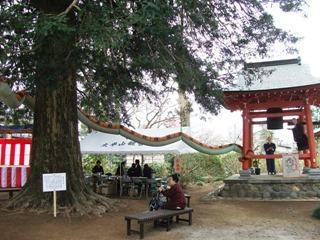 20130403_sashima31_02