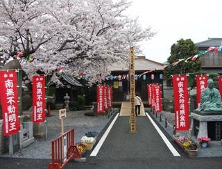 20130403_sashima32_01