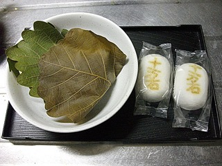 20130505_kashiwamochi01