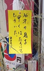 20130706_七夕